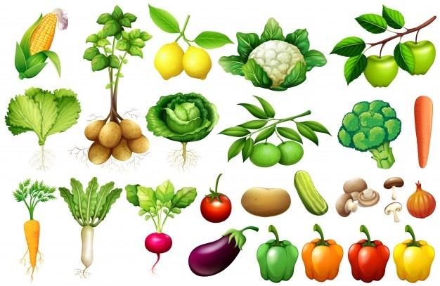 various-kind-vegetables